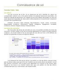 AUTRE: Connaissance de soi - Rapport d'évaluation personnel