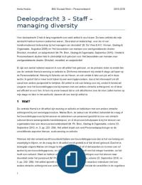 ESSAY: Diversiteit in de Organisatie