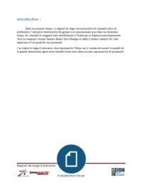 PRESENTATION: Rapport de stage Intermarché