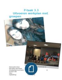 OVERIG: p-taak 3.3 uitvoeren werkplan met groepen