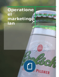 CASE: Operationeel Marketingplan Grolsch