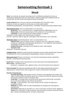 SUMMARY: Kerntaak 1 Verpleegkunde MBO, 4e leerjaar