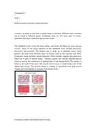 LECTURE NOTES: Unit 11 M1 Compare and Contrast four tissue types