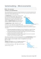 SAMENVATTING: Samenvatting Micro-economie