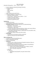 VORLESUNGSMITSCHRIFT: Anatomie Semester 1