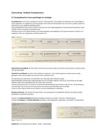 SAMENVATTING: Samenvatting Handboek Groepsdynamica, Jan Remmerswaal