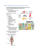SUMMARY: Obesitas en andere endocriene ziektes, week 2