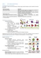 SUMMARY: Samenvatting Immuniteit 2e bach BMW UHasselt