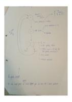VISUAL: Osmosis, diffusion and mitosis