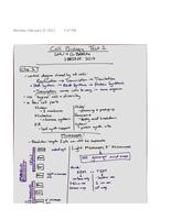 Prüfung: Dr. Batista Cell Biology Test 1