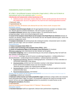 SAMENVATTING: Nederlandse Samenvatting Fundamental Rights in Europe: alle HC'S+ alle behandelde stof in WG's + alle voorgeschreven arresten duidelijk uitgezet in Nederlands