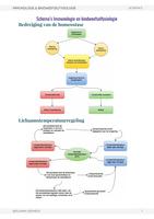 SAMENVATTING: Immunologie & Bindweefselfysiologie : Schema's