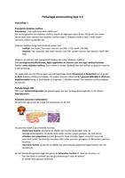 SUMMARY: Pathologie samenvatting blok 3.3 van het tentamen beroepsvoorbereiding 1