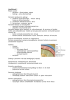SAMENVATTING: Samenvatting boek + hoorcolleges