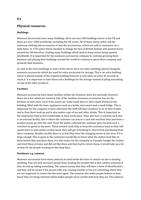 ESSAY: Level 3 business - unit 2 p3