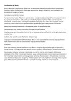 SUMMARY: Biopsychology notes
