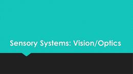 PRESENTATION: Sensory Systems Group Presentation