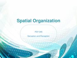 PRESENTATION: Spatial Organization