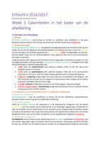 RESUME: Erfrecht II Samenvatting Literatuur