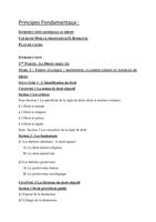 NOTES DE COURS: PARIS V- Droit L1 Cours Principes FondamentauxDroit S1 76 pages
