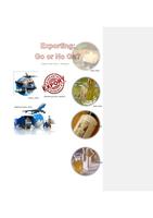 OVERIG: Export Plan Part 1 Analysis