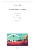 ESSAY: Level 3 ICT Year One Complete document D,D