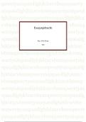 ESSAY: Essay Interactie IND CICA