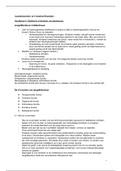 SAMENVATTING: Taal middenbouw samenvatting