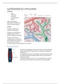 SAMENVATTING: Examengerichte samenvatting Transport mens: lymfe en immuniteit (met tekeningen en foto's!!!)