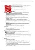 SAMENVATTING: Examengerichte samenvatting: transport mens: samenstelling bloed