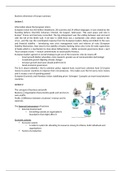 SAMENVATTING: The Business Dimension of Europe Summary