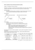 SUMMARY: Derivative Securities and Risk Management Samenvatting