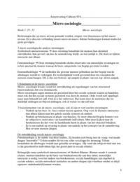 SUMMARY: Fijne samenvatting van Calhoun voor Sociologische Theorie 4